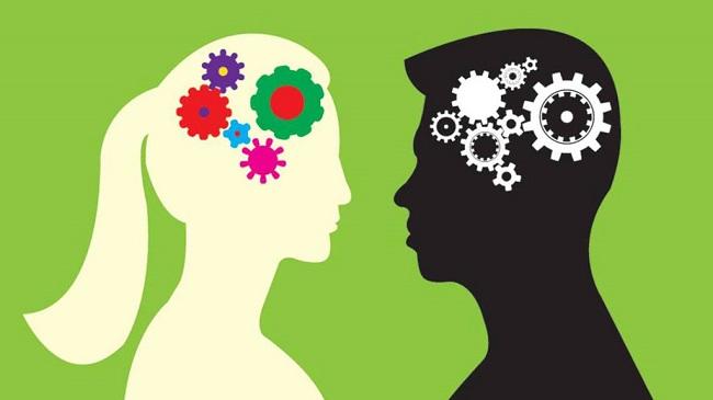 Phát triển trí lực ở nam và nữ